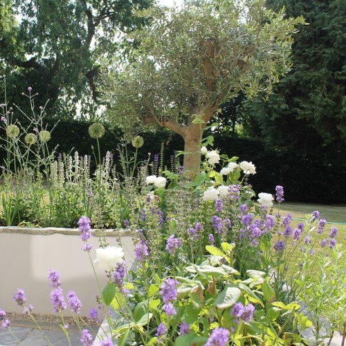 Interior Designers Garden Designs Bath Bristol Woodhouse Law